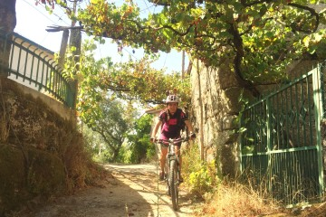 bike amarante