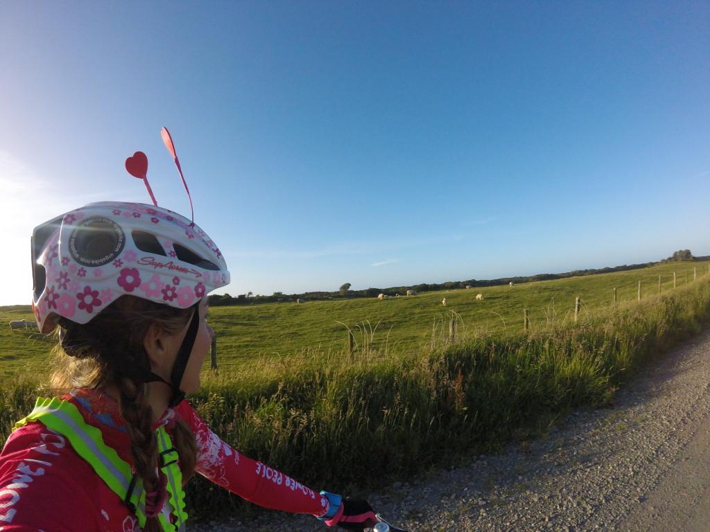 fields bike